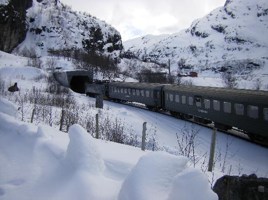 Vatnahalsen Hoyfjellshotell : trein richting myrdal vanaf hotel