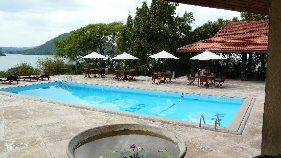 The Royal Lotus: Pool Area