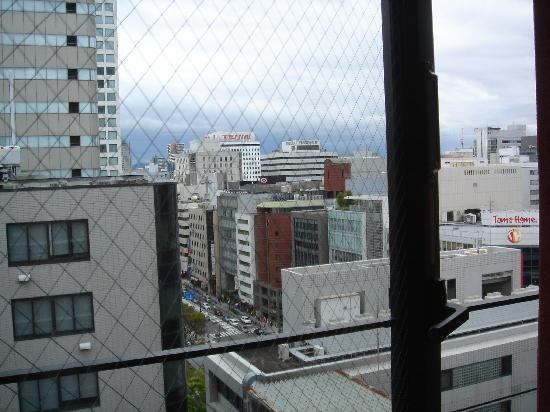 Arietta Hotel Osaka: View from our window