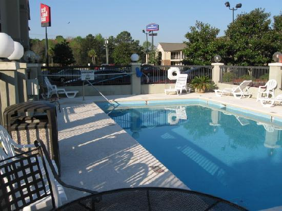 Red Roof Inn & Suites Savannah: Pool