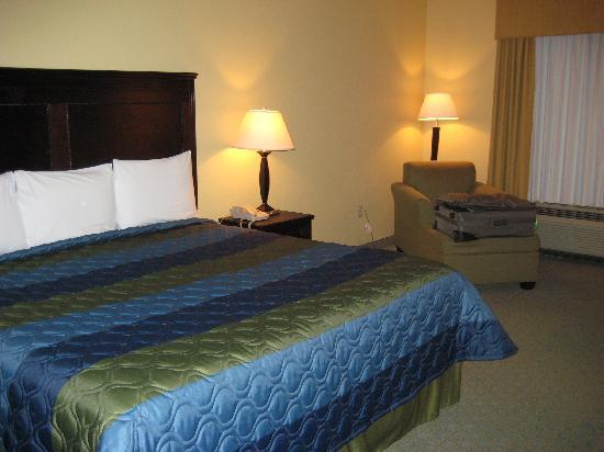 Ambassador Inn&Suites Tuscaloosa: New room