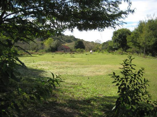 Posada Las Perdices: Pasture