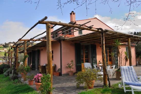 Farmhouse Olmo B & B: One of the terraces