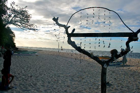 Yapak Beach (Puka Shell Beach) : puka !