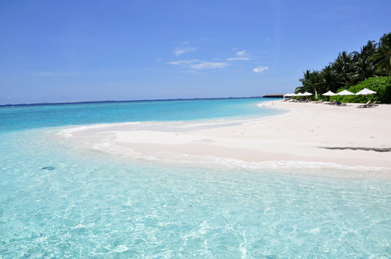 Velassaru Island: Incredible water