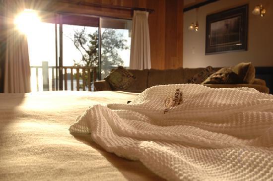 Tigh-Na-Mara Resort: Oceanview Guestroom