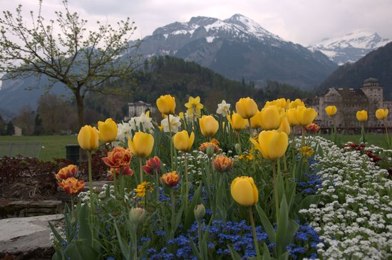 Unterseen, Switzerland: Just one of the many beautiful sceneries in Interlaken.(between Interlaken West and Interlaken O