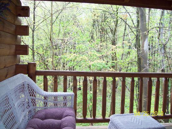 Cricket Hill Cabins: the back porch with the hot tub