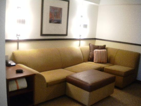Hyatt Place Detroit/Livonia: Couch