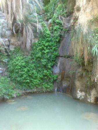 Aqaba, Ürdün: wadi Hasa Jordan