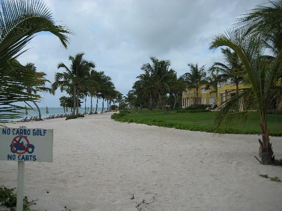 Tortuga Bay, Puntacana Resort & Club: beach