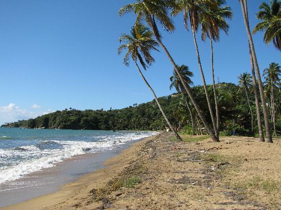Yabucoa, Puerto Rico: St. Lucia Beach (adjacnt to the hotel)