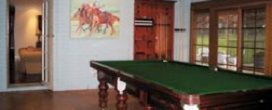 Gabriel's Paddocks Vineyard: The pool room