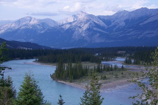 Pine Bungalows: Athabasca river