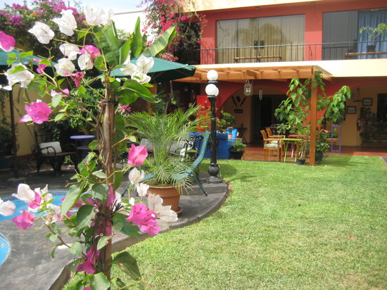 Peru Star Botique Apartments Hotel : Our back garden