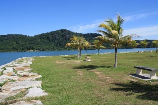 Pulau Penang-bild