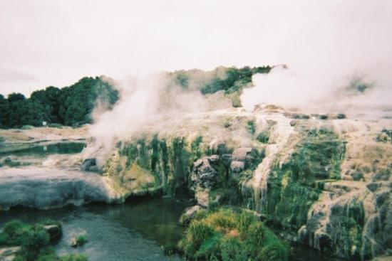 Rotorua Photo