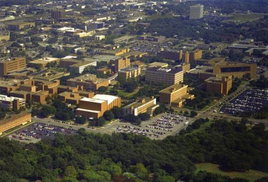 Arlington (TX) United States  City new picture : ... Arlington, TX, United States Picture of Arlington, Texas
