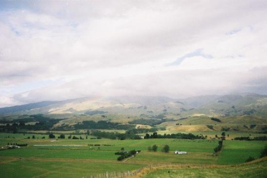 Palmerston North, Selandia Baru: View from Aimee's Dad's old Farm NZ