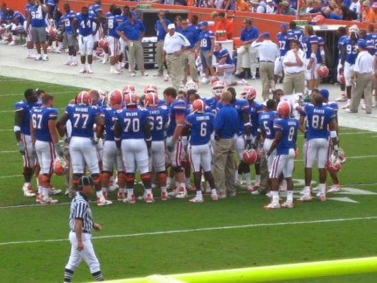 Gainesville Photo