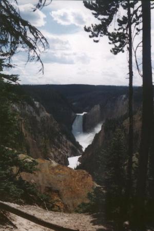Artist Point: Yellowstone Falls Yellowstone National Park