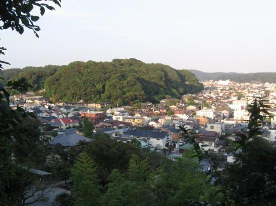 Kamakura Picture