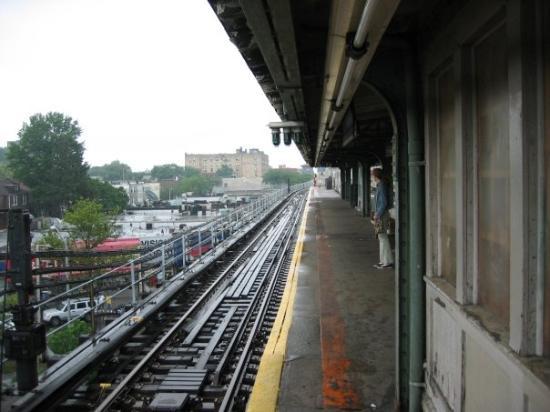 Bronx Photo