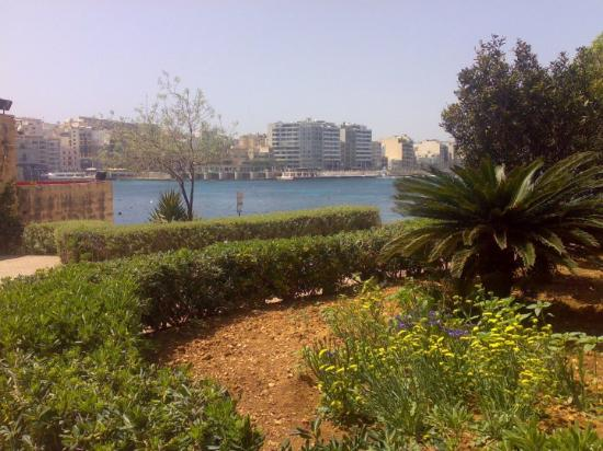 Qawra-billede