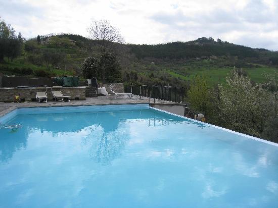 Locanda del Gallo : the swimming pool