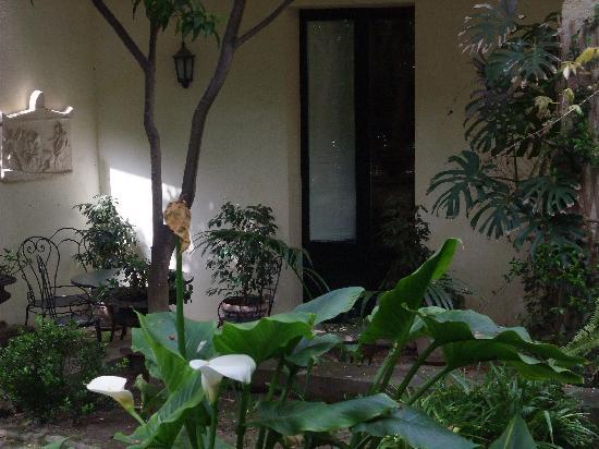 B&B Palazzo Bernardini: Garden