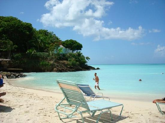 COCOS Hotel Antigua: la spiaggia