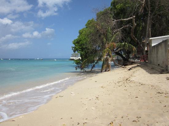 Sugar Cane Club Hotel And Spa Barbados