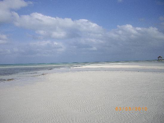 Gran Caribe Club Villa Cojimar: The fantastic beach