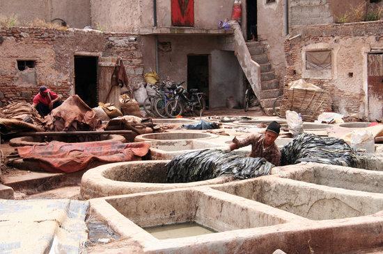 Marakesh, Maroko: Marrakech Tannery 1