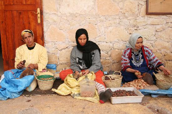 Essaouira - Argan Oil Co-Op along the way