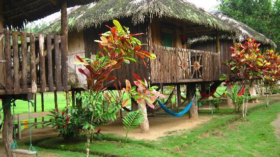 Pedernales, Ecuador: CABAÑAS ECOLOGICAS