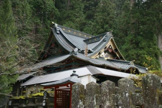 Nikko-bild