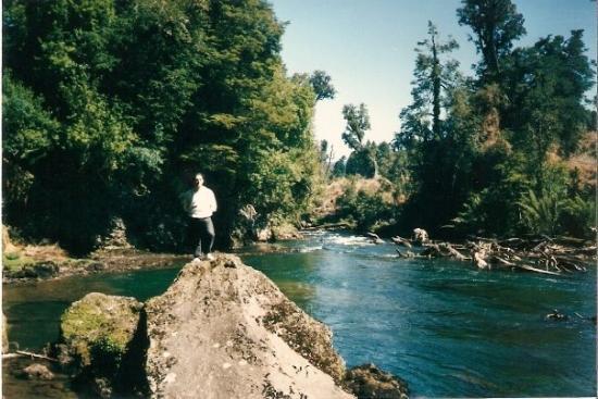 Neuquen, الأرجنتين: 1992