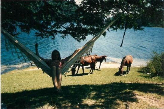 Neuquen, Argentina: Lago Correntoso. 1992. Parque Nacional.