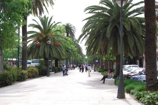 Málaga, España: Malaga. Allée parallèle au Paseo del Parque