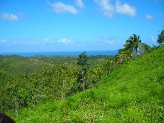 Puerto Plata, Dominik Cumhuriyeti: Ma préféré je crois