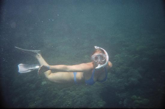 Las Brisas Huatulco: Snorkelling