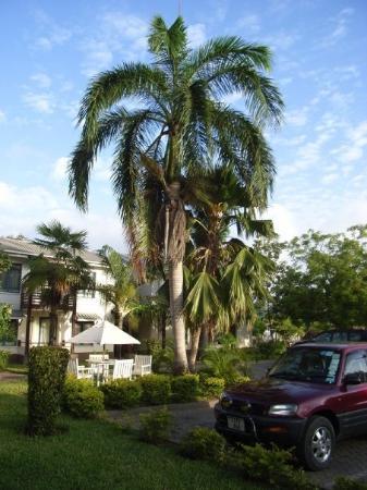 Protea Hotel Oyster Bay Dar es Salaam Photo