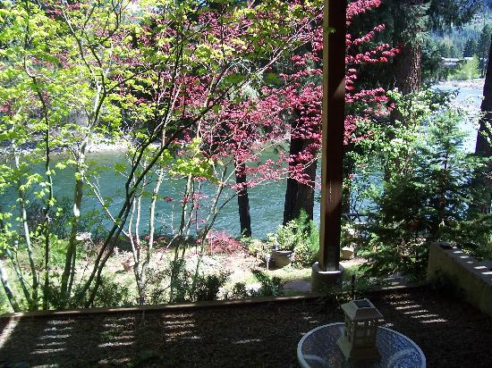 All Seasons River Inn: View of river from patio