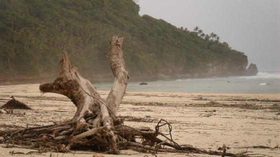 'Eua Island, Tonga: 'Eua's wild east coast