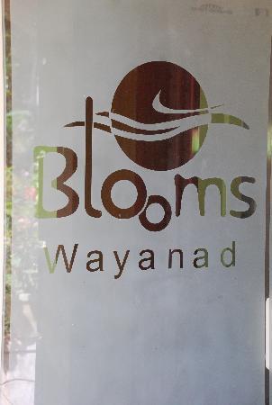Wayanad Blooms: Resort