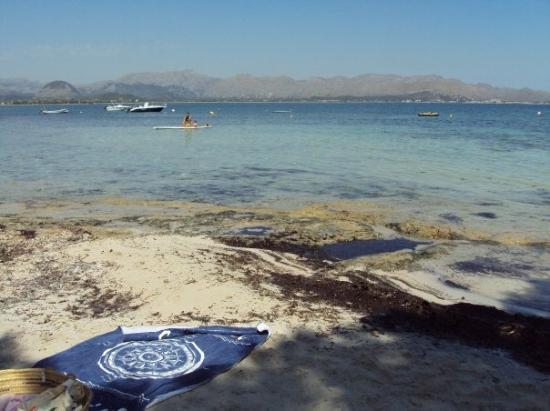 Port d'Alcudia, Ισπανία: Playa Es Bacarés, Alcudia. Mallorca. 4-7-2009