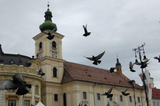Sibiu, رومانيا: Sibiu