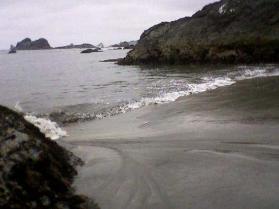 Brookings, OR: definately want to come back here. so beautiful.