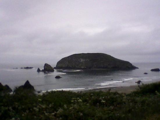 Brookings, OR: my phone takes such great pictures :D